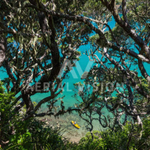 Water view through Pohutukawa Trees with Kayaker – Landscape - Aerial Vision Stock Imagery