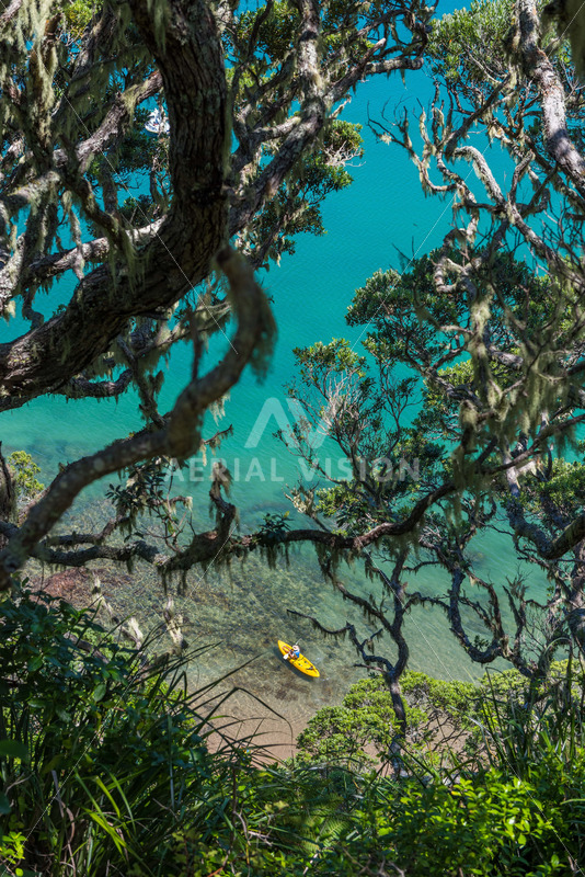 Water view through Pohutukawa Trees with Kayaker – Portrait - Aerial Vision Stock Imagery